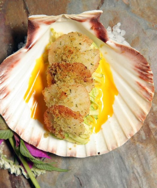 Scallops with fresh basil, lemongrass and grated graviera cheese from Ierissos