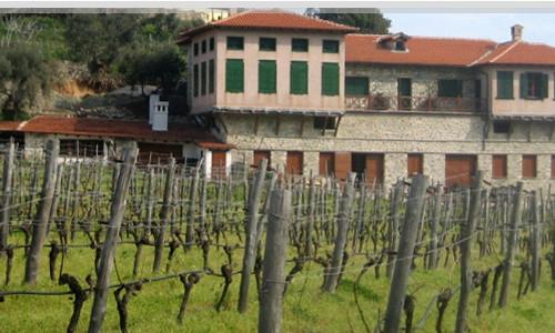 Milopotamos wines